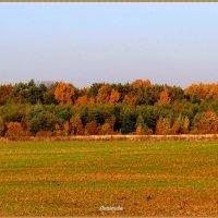 Осень. :: Антонина Гугаева