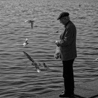 Одинокий старик :: Геннадий Коробков