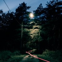 Вечерний парк. :: Максим Grin
