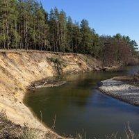 Река Потудань № 2 :: Анна Токорева