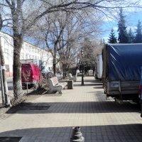 К весне аллея села на диету и похудела. :: Ольга Кривых