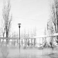 отопительный сезон в парке :: Иван Елфимов