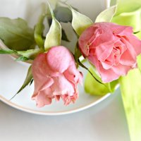 Розовая нежность . :: Маry ...