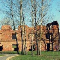 остатки мельницы.... :: Lilek Pogorelova