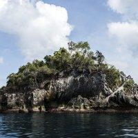 таинственный остров :: Александр