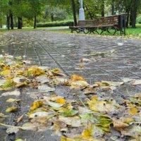 Осень :: Александр Яковлев