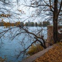 Донецк. Осень :: Олег Зак