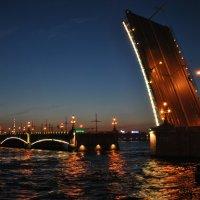 Ночь в Петербурге :: Анна Медведева