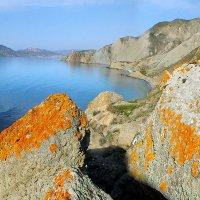 весенний берег :: viton