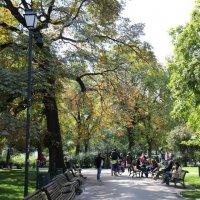 В парке :: Елена Миронова