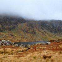 Ирландия :: Dima Traber