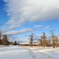 По дороге в Усть-Кан :: Максим Блинов