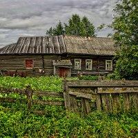 Картошки буйный цвет :: Владимир Воробьев