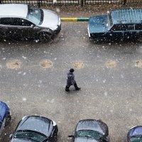 Зима не прощается :: Марина Шалкичёва