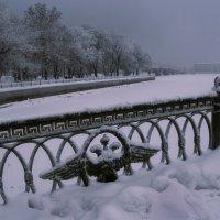 Зима у Петропавловки 1 :: Цветков Виктор Васильевич