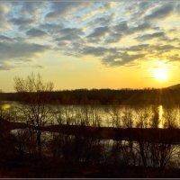 Рассветное утро :: galina tihonova