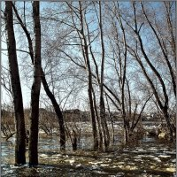 Весенний пейзаж :: Александр Смольников