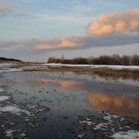 Весенний пейзаж :: Kassen Kussulbaev