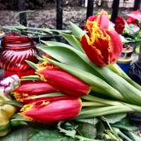 цветы в память :: Ира Днепровская