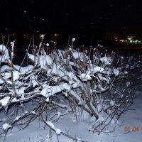 снег в апреле :: Дмитрий .