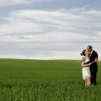 Свадьба Славы и Дарьи :: Pavel Shardyko