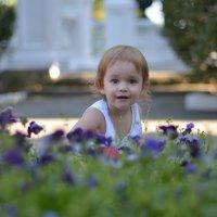 Цветочки :: Анастасия Лебедовских
