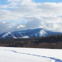 Зимняя Башкирия :: Анна Агеева