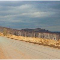 Весна на дороге. :: Наталья Юрова