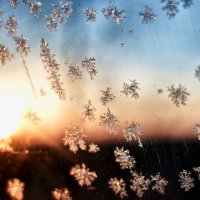 Морозное утро :: Антон Бабалян