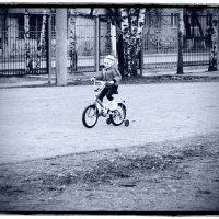 Велопрогулка :: Артем Ю