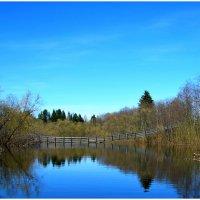 Река Сефтра весной :: Иван Клещин