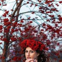 Дыхание зимы :: Марина Екимкова