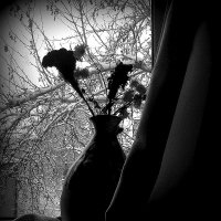 Зимняя грусть. :: МАК©ИМ Пылаев-Пшеничников