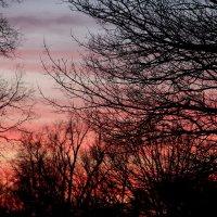 Закат на Нешнл Молл. :: Виктория