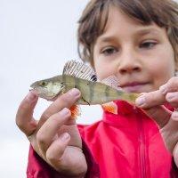 ловись рыбка... :: Алексей -
