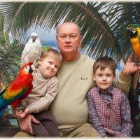 Семейное фото с попугаями на память - 300 руб.:) :: Дарья Казбанова