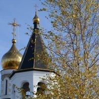 Осенние купола :: Валентина Погорелова