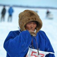Самый возрастной участник гонок на оленьих упряжках. :: Лариса Красноперова