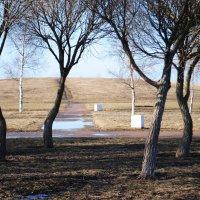 Парк весной :: Любовь Лунёва