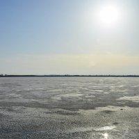 Весна на озере :: юрий Амосов