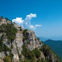 Крым, гора Айпетри :: Сергей Андреев