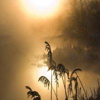 солнце спать ложиться :: Юрий Емельянов
