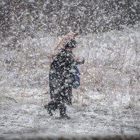 Снежный апрель :: Василий Либко