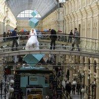 Невеста, невеста, а чья - неизвестно :: Алексей Окунеев