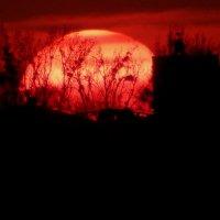 Захід сонця :: Maria Jankiv