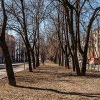Н.Новгород. Звездинка. :: Максим Баранцев