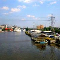 Электричка заглохла на мосту ... :: Михаил Юрин