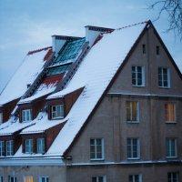 Кто там живёт?! :: Valentina Zaytseva