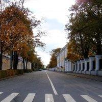 Петергоф. Любимая улица :: Владимир Гилясев