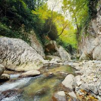 Горная река :: Дмитрий Писковец